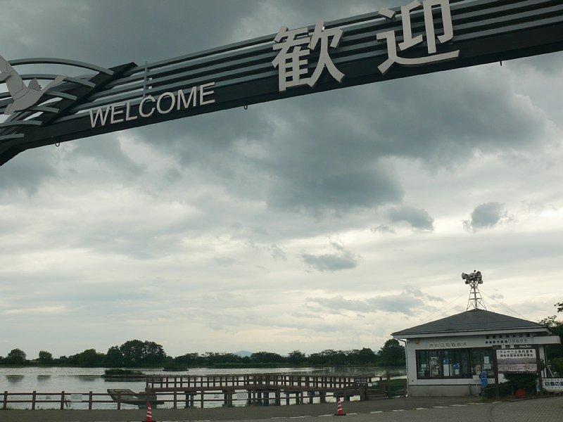 ラムサール湿地「瓢湖」